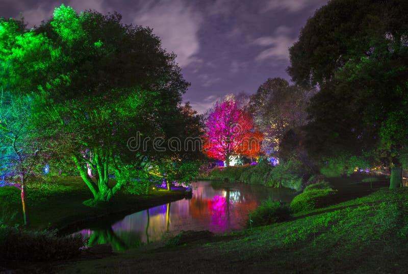 Floresta encantado no parque de Syon imagens de stock royalty free