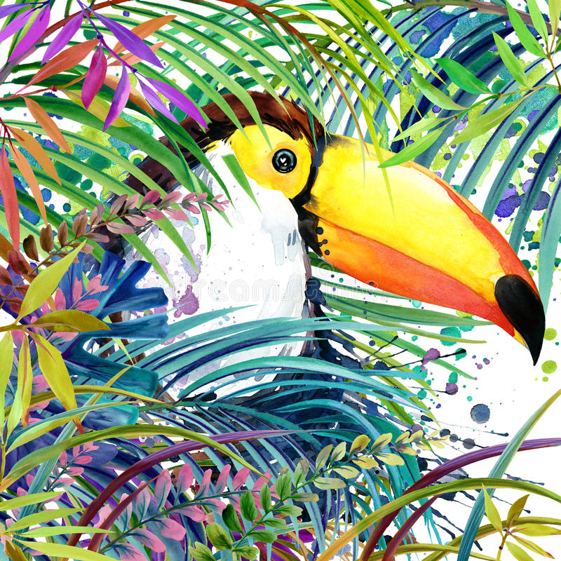 Floresta exótica tropical, pássaro do tucano, folhas verdes, animais selvagens, ilustração da aquarela