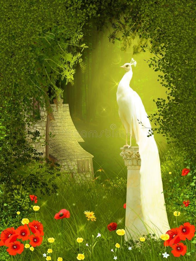 Floresta feericamente com pavão ilustração do vetor