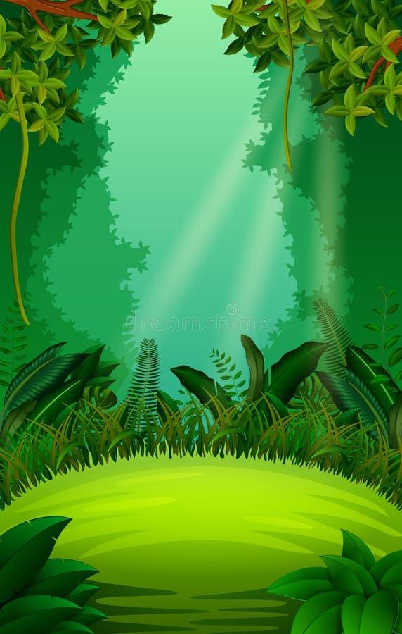 Floresta limpa e verde ilustração do vetor