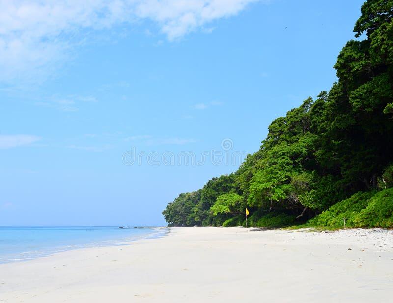 Floresta litoral verde luxúria, areia branca, Azure Water e céu azul, praia de Radhanagar, Andaman & ilhas Nicobar, Índia fotos de stock royalty free