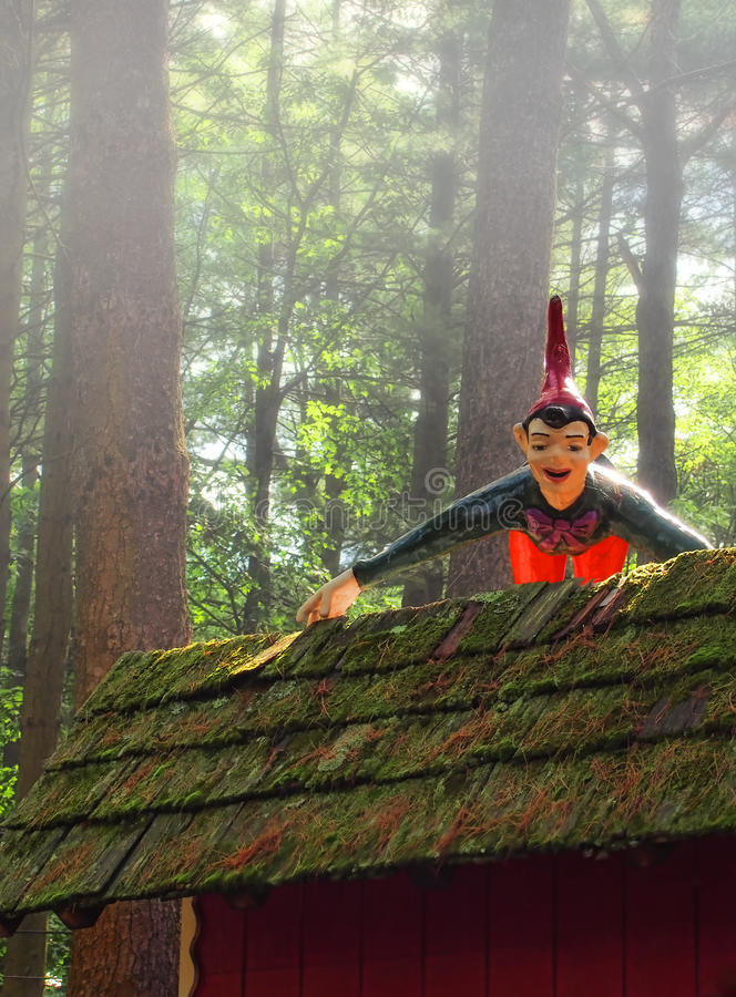 A floresta mágica fotografia de stock