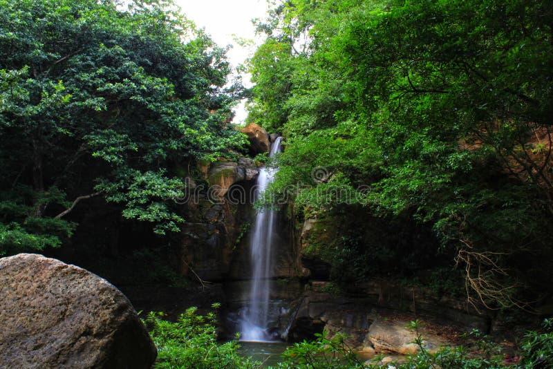 Floresta maravilhosa escondida da cachoeira do paraíso imagens de stock