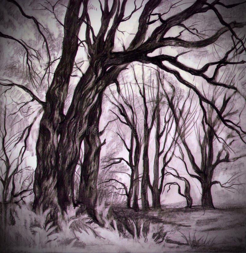 Floresta Mystical ilustração royalty free