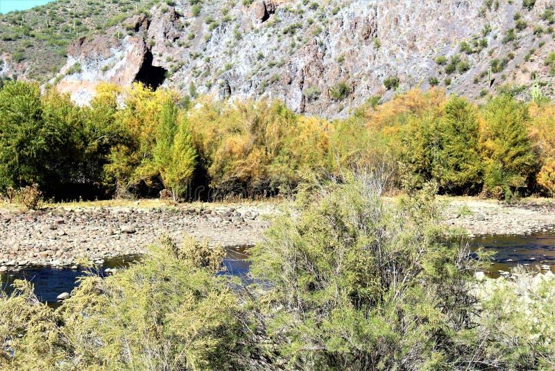 Floresta nacional de Tonto, o Arizona U S Ministério da Agricultura fotografia de stock