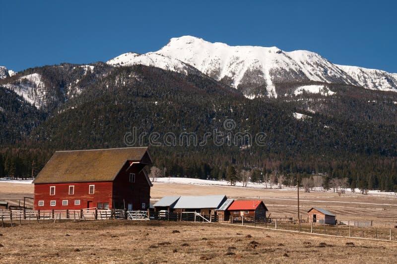 Floresta nacional de Wallowa do inverno vermelho da montanha do celeiro foto de stock