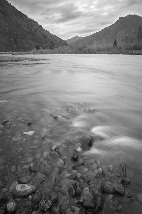 Floresta nacional do Shoshone imagens de stock royalty free