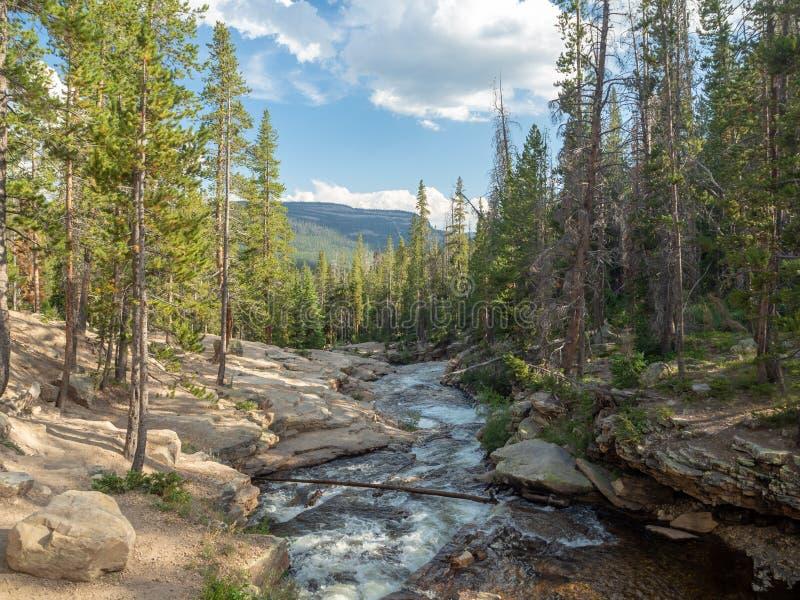 Floresta nacional do Uinta-Wasatch-esconderijo, lago mirror, Utá, Estados Unidos, América, perto do lago slat e do Park City imagem de stock royalty free