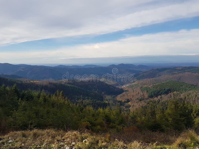Floresta Negra do panorama fotografia de stock royalty free