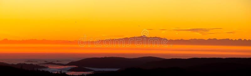 Floresta Negra do panorama com cumes fotografia de stock
