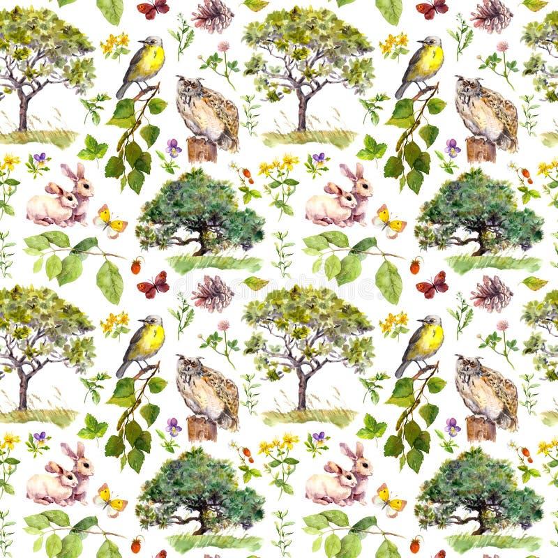 Floresta ou parque: pássaro, coelho, árvore, folhas, flores e grama Repetindo o teste padrão Cor de água foto de stock