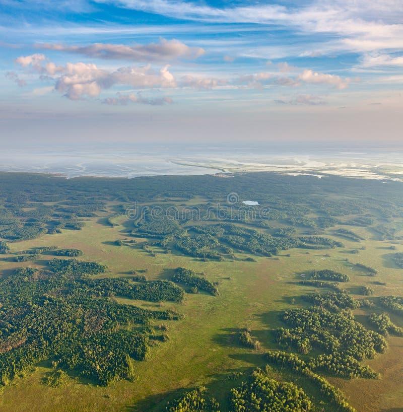 Floresta perto do rio grande no período da inundação, vista superior fotos de stock royalty free