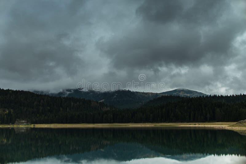 A floresta refletiu na água do lago preto imagem de stock