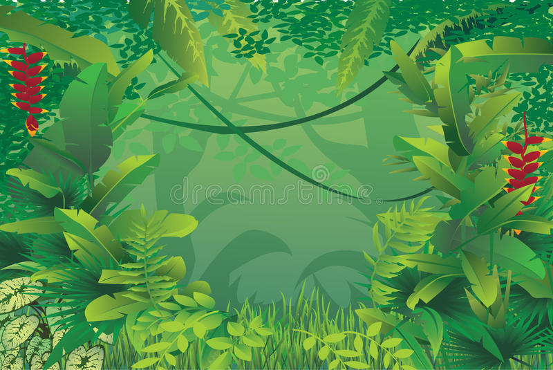 Floresta tropical exótica ilustração royalty free