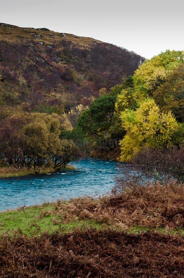 Florestas e rio do outono em Escócia do norte foto de stock