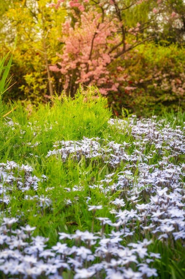 Floriade-Festival-Park im Frühjahr lizenzfreie stockbilder