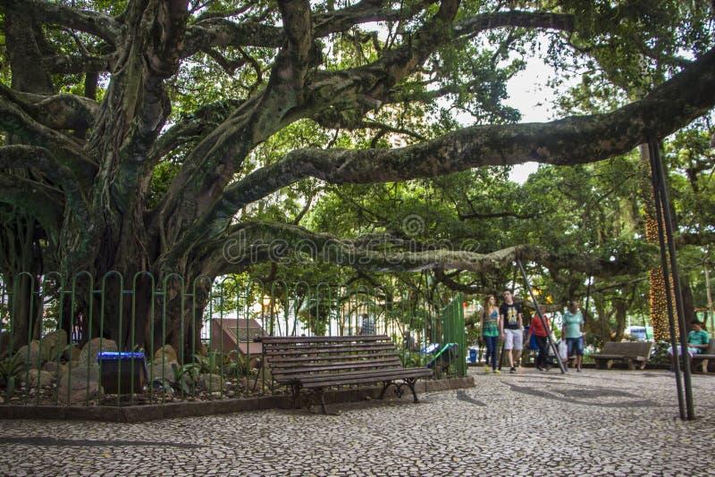 Florianópolis/SC - Brésil photo libre de droits