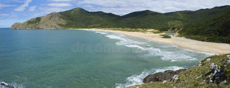 florianopolis пляжа стоковая фотография rf