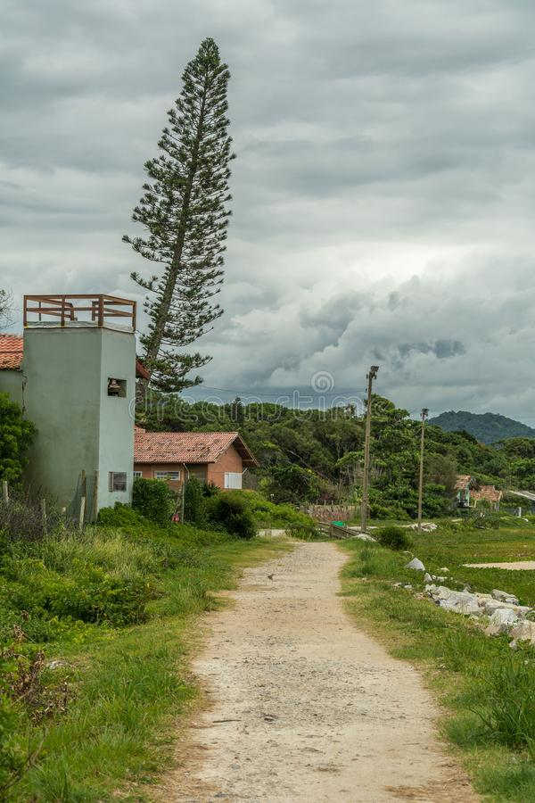 Small bowlder and sand path, a house and a typical pine tree on. Florianopolis, Brazil. February, 2018. Small bowlder and sand path, a house and a typical pine stock photo