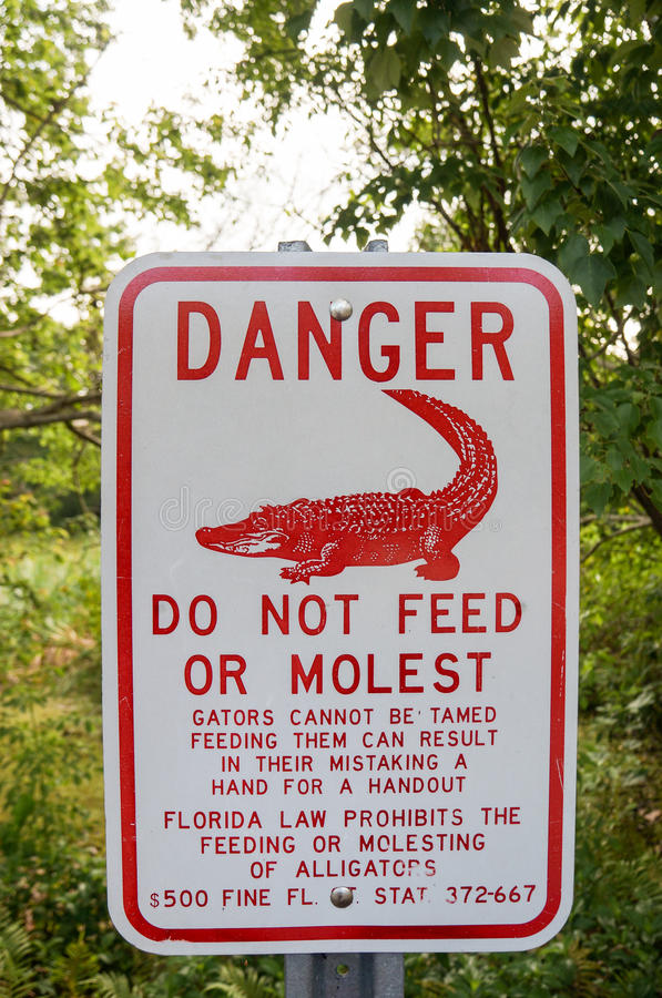 Florida alligator warning sign stock photo
