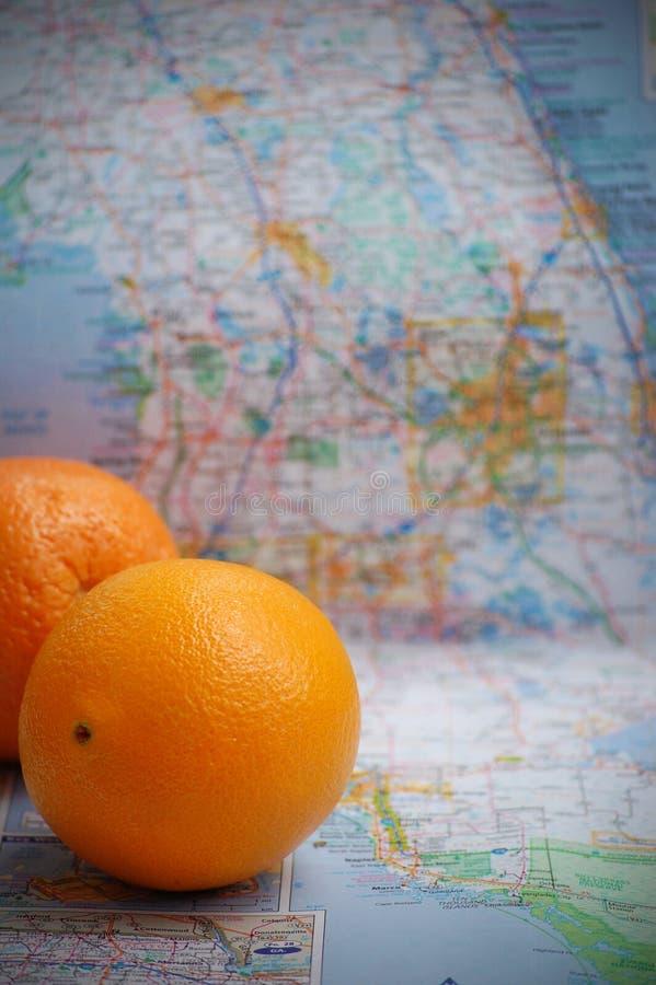 Florida apelsiner arkivfoton