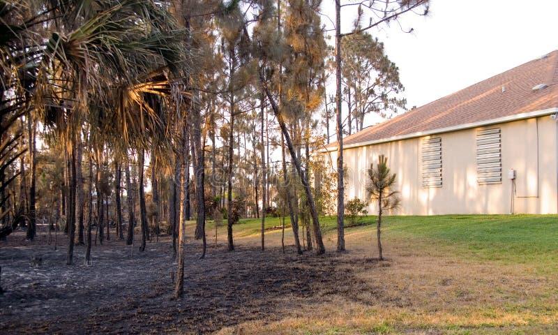 Florida auf Feuer stockfoto