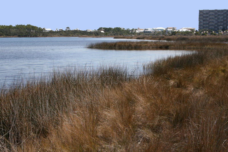 Download Florida bay stock image. Image of peaceful, coastal, panhandle - 11219987