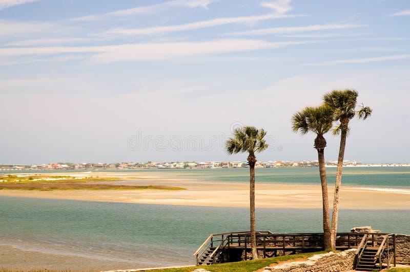 Florida bay and Palm trees stock photos