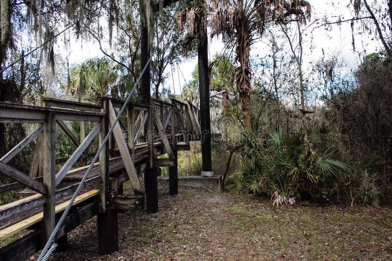 Florida Canopy Walkway. Cabled walkway in the natural Florida Canopy stock images