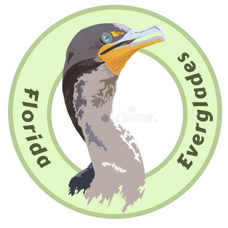 Florida Everglades National Park Cormorant Detailed Vector Design stock image