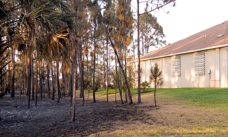 Download Florida on Fire editorial image. Image of danger, home - 5173430