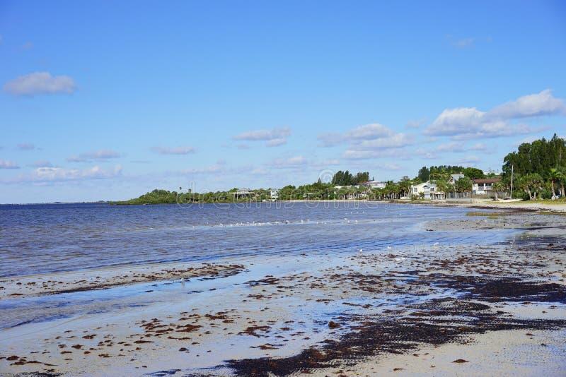 Florida hernando beach stock photography