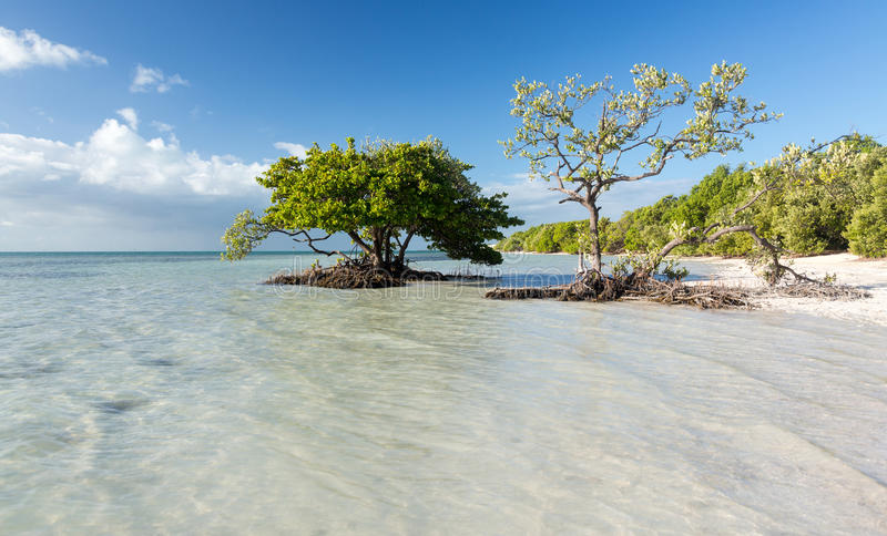 Florida Keys Anne's Beach. Anne's Beach by roadside in Florida Keys by Route 1 Overseas Highway stock images