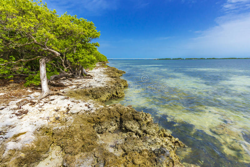 Florida Keys Island royalty free stock photos