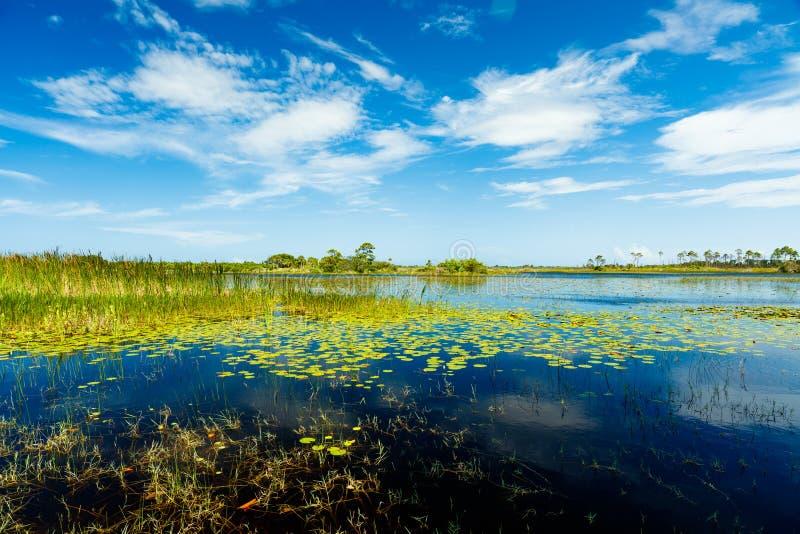 Florida-Landschaftsschutzgebiet stockfotos