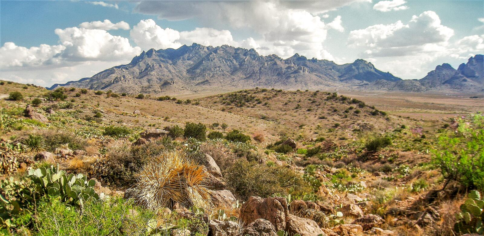 Florida Mountains near Deming, New Mexico. The Florida Mountains provide a scenic backdrop for Rockhound State Park just east of Deming, New Mexico stock photos