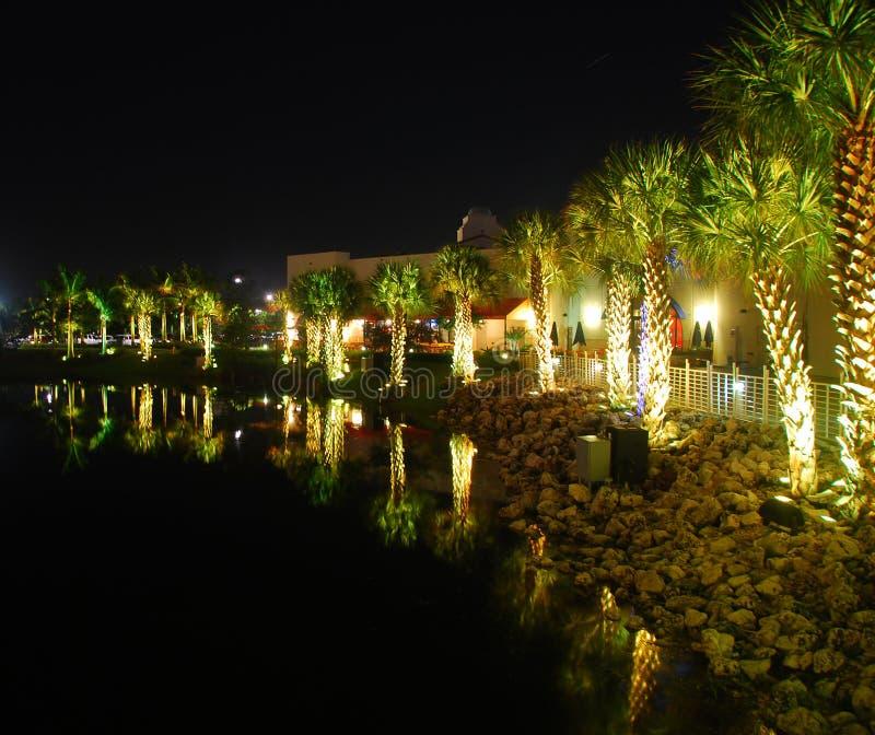 Florida-Nachtleben stockfoto