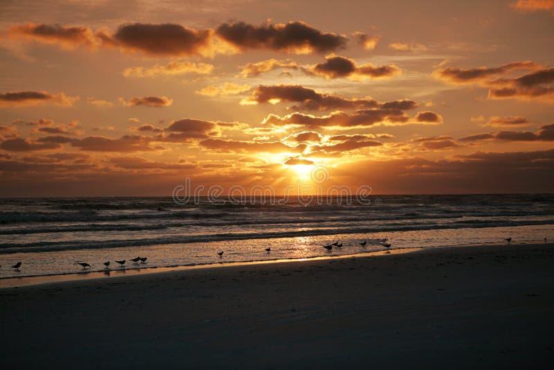 florida solnedgång arkivbilder