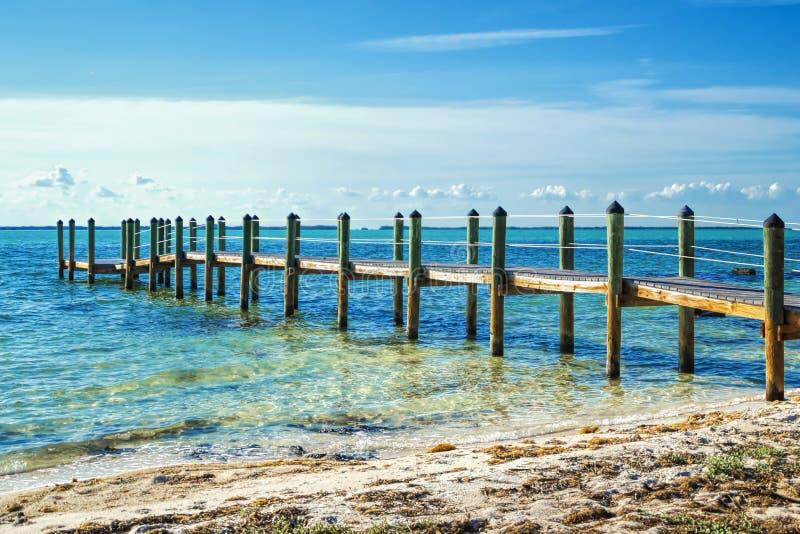 Florida stämmer ölanscape fotografering för bildbyråer