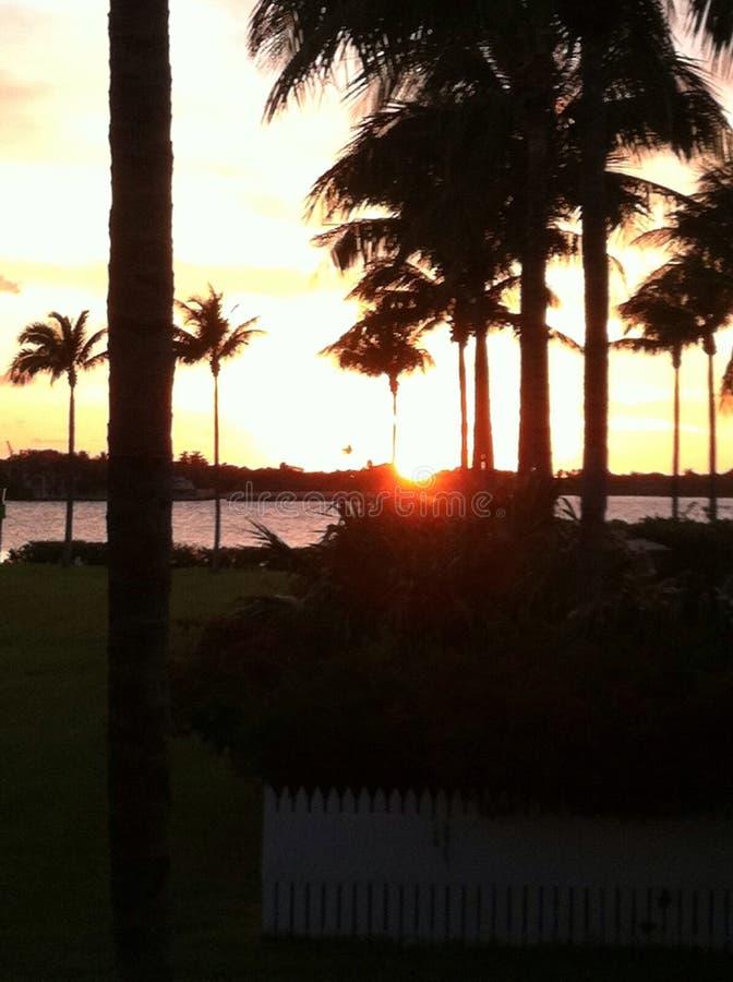 Florida stämmer solnedgång 3 royaltyfri fotografi