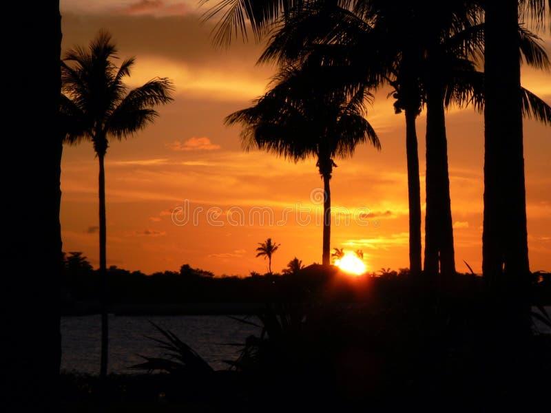 Florida stämmer solnedgång 4 royaltyfria foton