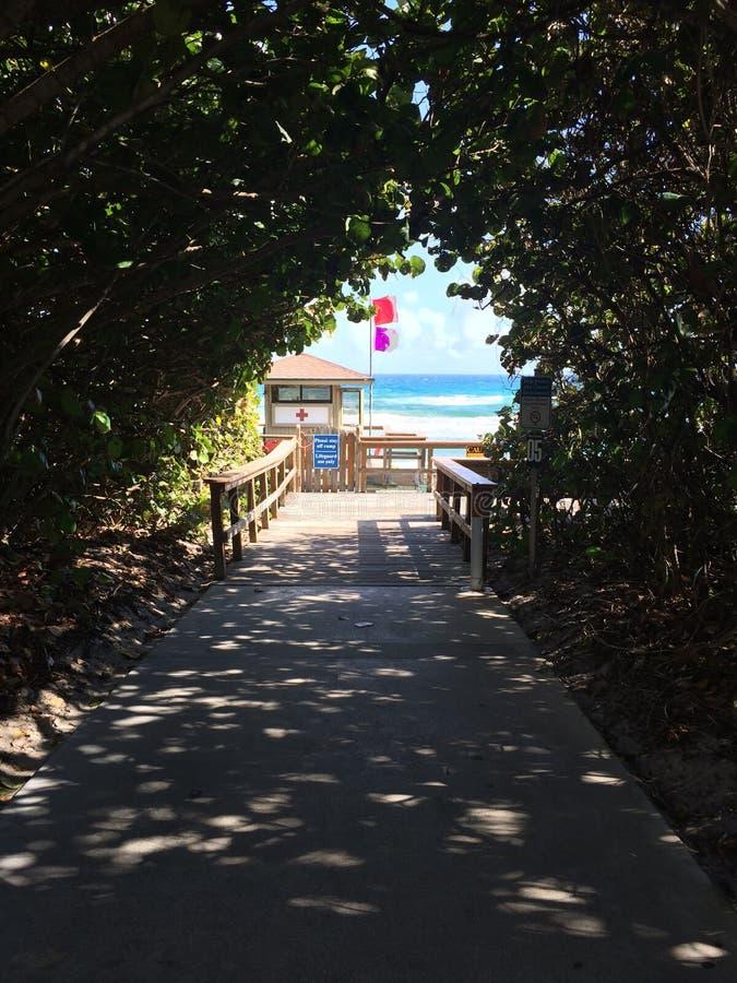 Florida-Strand und Gebäude stockbilder