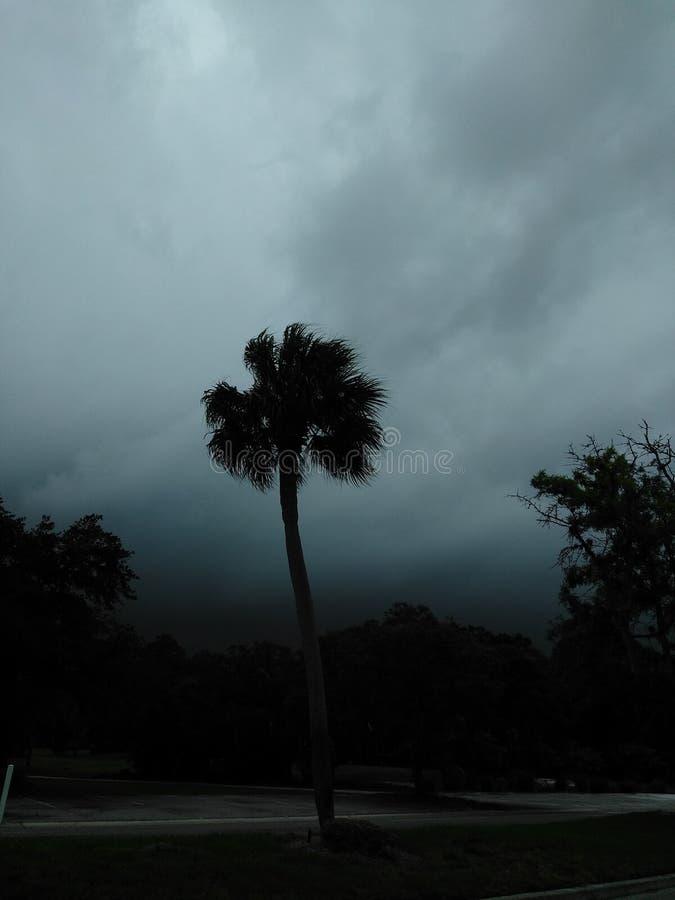 Florida-Sturm lizenzfreies stockbild