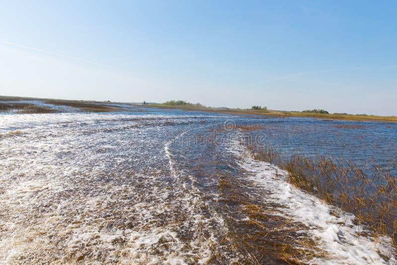 Florida-Sumpfgebiet, Airboatfahrt am Everglades-Nationalpark in USA Populärer Platz für Touristen lizenzfreies stockbild