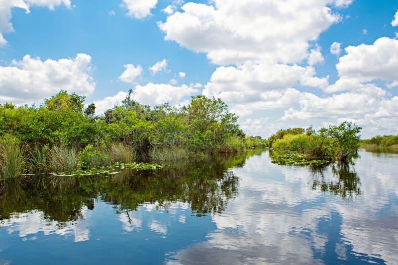 Florida-Sumpfgebiet, Airboatfahrt am Everglades-Nationalpark in USA Populärer Platz für Touristen, wilde Natur und Tiere lizenzfreies stockfoto