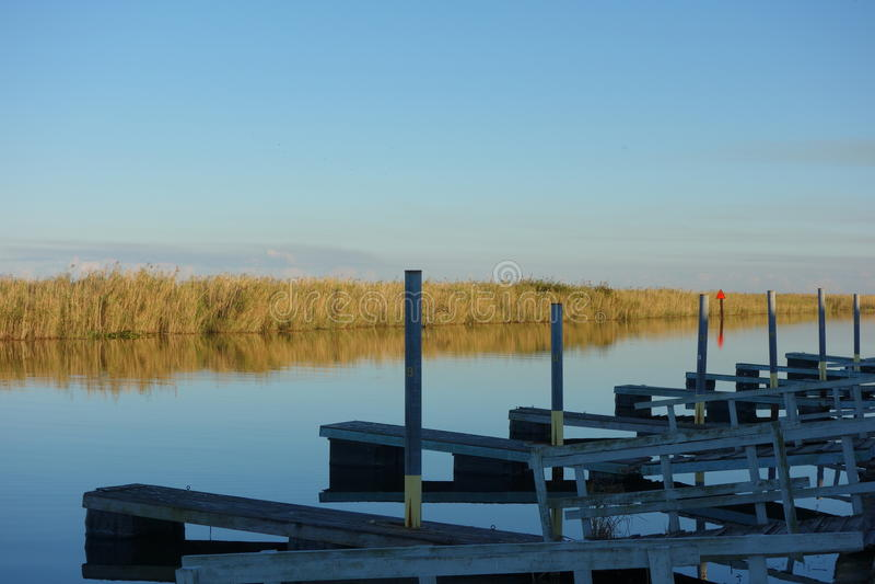 Florida-Sumpfgebiete stockfotos