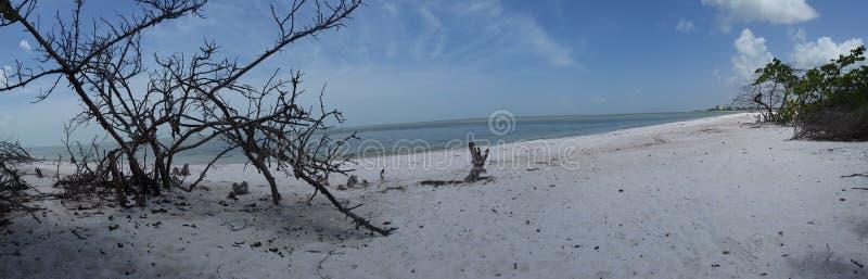 Florida views stock photos