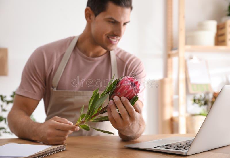 Florist con protea flower vicino al computer portatile immagini stock