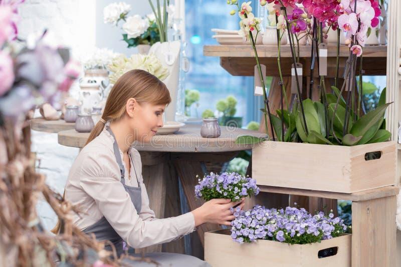 Florist durch die Blumentöpfe stockfotos