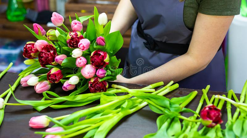 Florist girl makes a bouquet of tulips stock photography